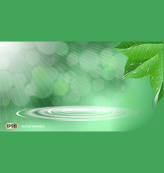 Organic leaves with waterdrops dazzling effect vector