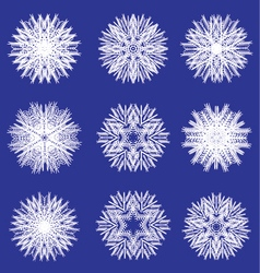 Fluffy white snowflakes for design vector