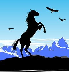 Horse standing vector image