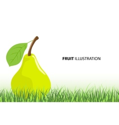 ripe pear vector image vector image