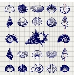 Sketch of sea shells vector image