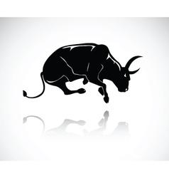 bull 4 vector image