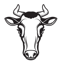 cow head isolated on white background design vector image
