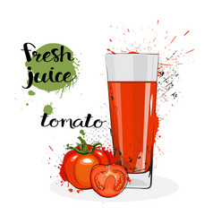 Tomato juice fresh hand drawn watercolor vegetable vector