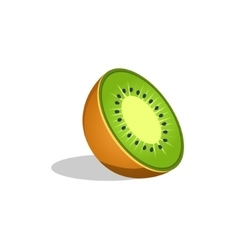 Kiwi fruit cut in half bright icon vector