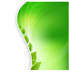 eco leaves on natural background vector image
