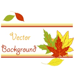 Bright pattern with autumn leaves vector