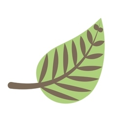 Leafs plant decoration isolated icon vector