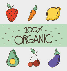 Delicious organ fruits and vegetables vector