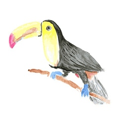 Watercolor tucan bird in vintage style vector image