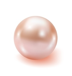 Pearl realistic isolated on white background vector