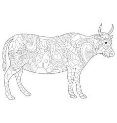 Cow coloring for adults vector image vector image