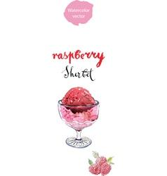 Raspberry sherbet vector