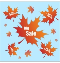 Discount with leaves vector image vector image