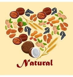 Natural nuts and cereals poster vector