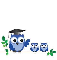 owl teacher branch vector image vector image