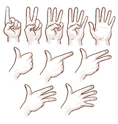 hand drawing sketch man hands showing numbers vector image vector image