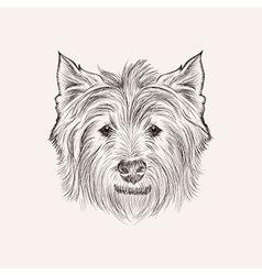 Sketchwest highland terrier hand drawn illstration vector