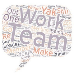 Team work no thanks text background wordcloud vector