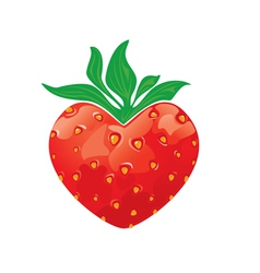 Strawberry heart isolated on white background vector image