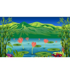The water lilies and flowers at the lake vector