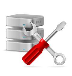 configuring database icon on white background vector image