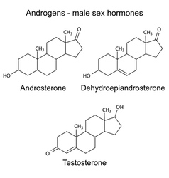Chemical formulas of male sex hormones vector