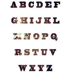 English textured alphabet vector