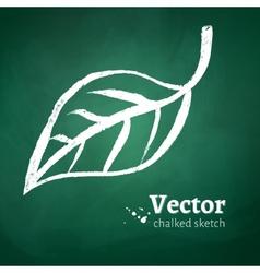 Chalked leaf vector image