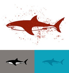 White shark logo vector