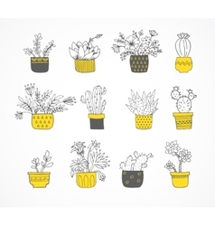 Cute hand drawn cactus set vector