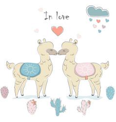 cute alpaca couple vector image