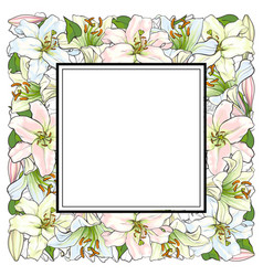 hand drawn tulip square frame vector image