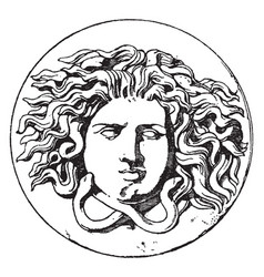 Medusa head vintage vector
