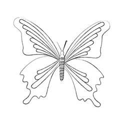 Sketch draw butterfly cartoon vector