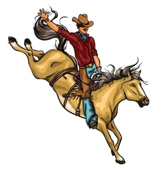 Rodeo cowboy riding a horse isolated vector