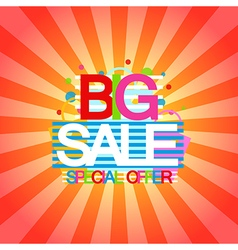 Big sale and special offer discount and shopping vector