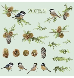 Retro birds and winter elements - watercolor style vector