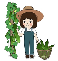 Planter and cucumber vector
