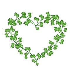 Beautiful fresh green leaves in a beautiful heart vector