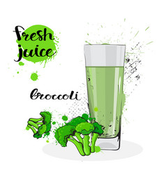 Broccoli juice fresh hand drawn watercolor vector