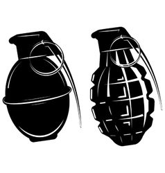 hand grenade bomb explosion weapons army weapon vector image vector image