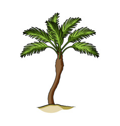 palm beach treesummer rest single icon in cartoon vector image