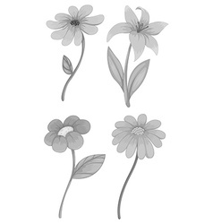 Four different kind of flowers vector