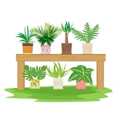 Gardening table with potted herbs vector