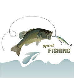 bass fishing vector image vector image