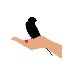 Sparrow in hand vector