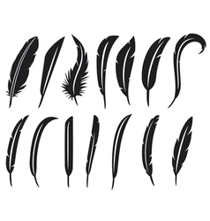 collection of feathers - feather collection vector image