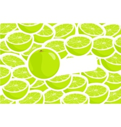 ripe lime vector image vector image