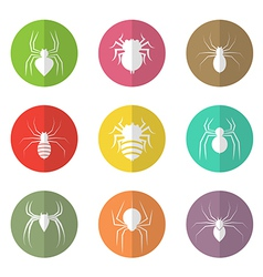 Group of spider in the circle vector